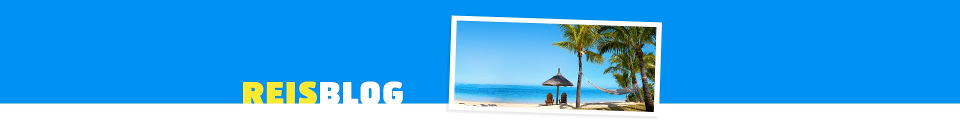Prachtig wit strand met wuivende palmbomen en azuurblauwe zee.