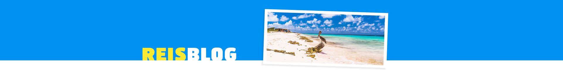 Prachtig zandstrand van Bonaire