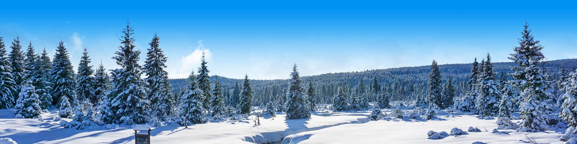 Prachtig besneeuwd landschap in Tsjechië