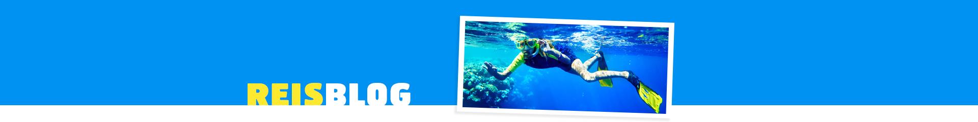 Foto van een persoon aan het snorkelen in de zee van Egypte
