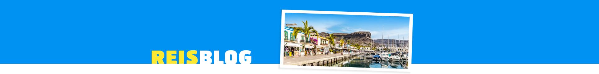 Boulevard, met palmbomen en een haven met bootjes in een haven