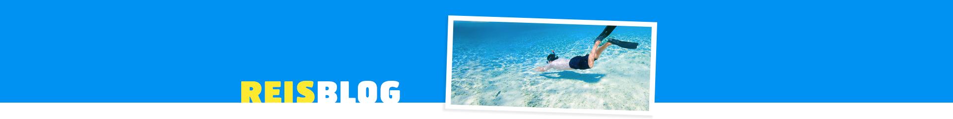 Duiken in de tropische zee tijdens een vakantie in de Malediven
