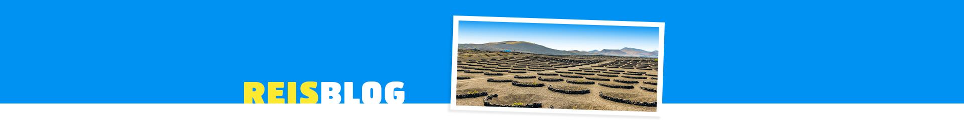 Uitzicht op het landschap van Lanzarote
