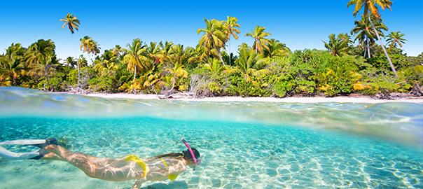 Snorkelen in helder zeewater met tropische palmen